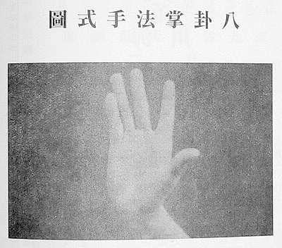 """牛舌掌与龙爪掌:谈八卦掌""""掌型""""的演化"""