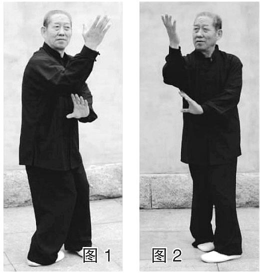 京东楼梓庄的程式八卦掌(作者:奎恩凤)